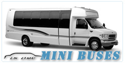 Mini Bus rental in Chicago, IL