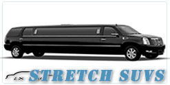 Chicago wedding limo